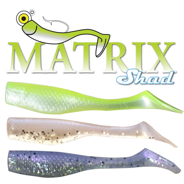 Matrix Shad