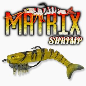 Matrix Shrimp