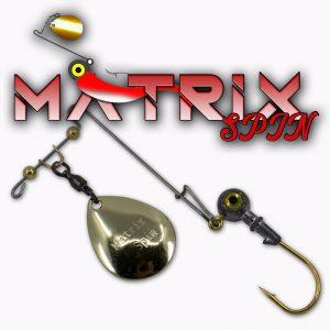 Matrix Spin